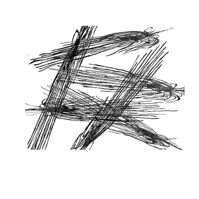 image-11-web