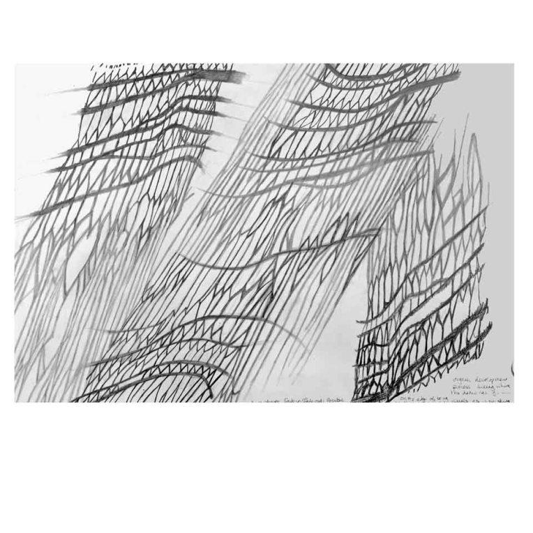 image-13-web