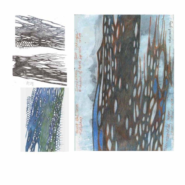 image-5-web