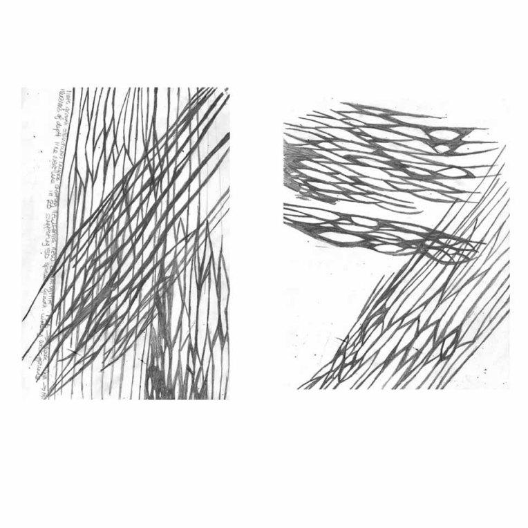 image-6-web